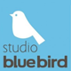 Studio Blue Bird